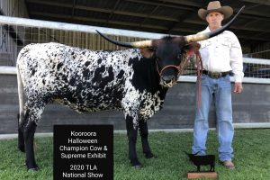 Texas Longhorns Australia announce 2020 competition winners at AGM and presentation night